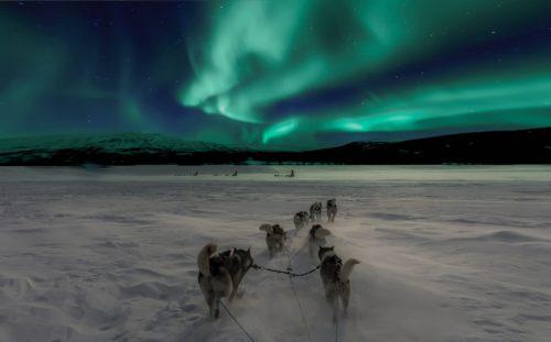 Opowieści z dalekiej Północy na pierwszy weekend lutego